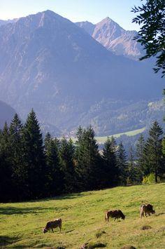 Blick auf Bad Hindelang von Oberjoch aus. Allgäu