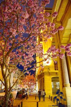 A spring night in #Beirut ليلة ربيع ب #بيروت By Bassim Mahmoud #WeAreLebanon #Lebanon