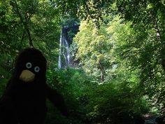 Erwin und ein Wasserfall.