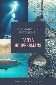 In this series of articles, we'll shine a spotlight on some of the world's best underwater photographers. Today we highlight Tanya Houppermans. Underwater Photographer, Underwater World, Scuba Diving, Highlight, Photographers, Articles, Ocean, Community, Spotlights