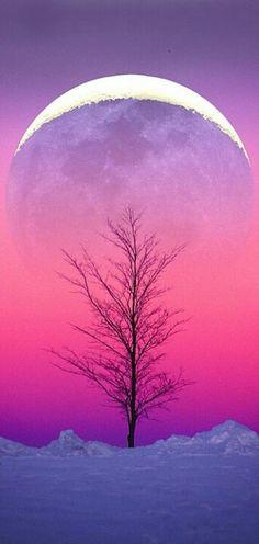 Neon Sky