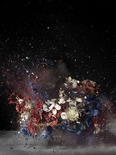 Flower Bomb. By Ori Gersht via #deepseathoughts.