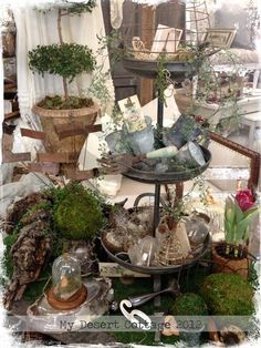 Miniature Garden Bliss - Green Acres at Sweet Salvage