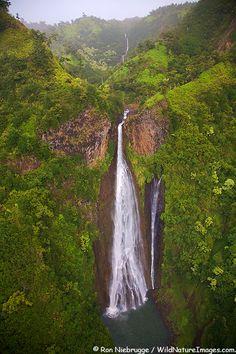 The waterfall featured in the movie Jurassic Park, Kauai, Hawaii. Photo by Ron Niebrugge.