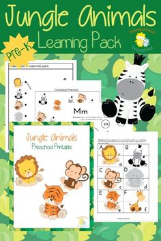 Preschoolers love animals! Teach or reinforce preschool skills with this fun jungle animal-themed preschool pack! | http://homeschoolpreschool.net