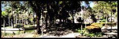 Outro lugar pitoresco, muito agradável é o Parque Moscoso. Antiga parada de cavalos com bebedouro que está preservada até os dias atuais. Foi reformada e atualmente é palco de shows, apresentações, tem área com pequeno lago, muitos patos e outros pequenos animais, vários parques para as crianças e uma escola/ museu de ciências físicas e naturais. O complexo é um dos lugares prediletos para passear, para o lazer em família no centro da cidade de Vitória.