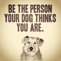 #Dogs #Life