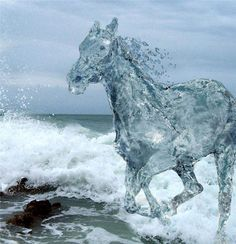 Hydro the second is a water horse. He cannot be ridden but will make a perfect companion isonhold