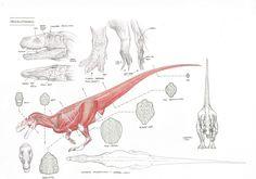 http://www.10tons.dk/upl/website/megalosaurus/Meglosections0_srcset-large.jpg