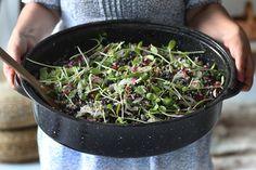 Kinfolk Magazine - Journal - Recipe: Minty Black Bean Salad, TorontoDinner