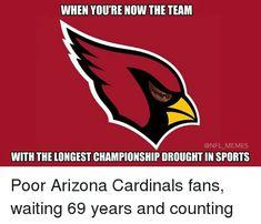 Arizona cardinals suck