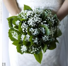 Baby's Breath and Greens.