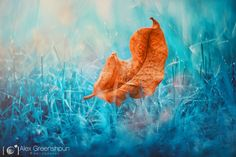 beautiful The Beauty Of Fall Landscape Photographed By Alex Greenshpun  #Art #Autumn #Fall #Landscape #Photography We love autumn, a magical and colored time of the year. Photographer Alex Greenshpun has taken the quintessence of this season through this series of ...