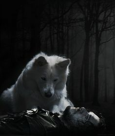 "Game of Thrones: Jon Snow and Ghost. ""Ghost"" he whispered.. Jon's last words from A Dance With Dragons"