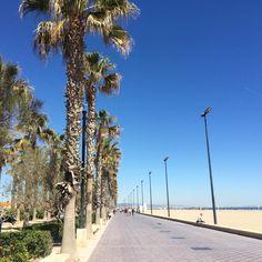 Valencia - two years ago 🌴 🇪🇸 #readyforsummer #spain #valencia #wine #ocean #beach #spaintravel #summervibes #summer #tapas Spain Travel, Ocean Beach, Valencia, Summer Vibes, Tapas, Sidewalk, Wine, Instagram Posts, Outdoor