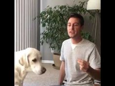 "Kyle Kittleson's Replay of a Tully's Dog Training Live session - How to Teach Your Dog ""Sit"" the First Time http://www.youtube.com/watch?v=rFrgi7TbrQw"
