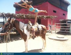 """#Yoga Poses Around the World: """"Horseback Warrior III"""" Loved and Pinned by www.downdogboutique.com to our Yoga community boards"""