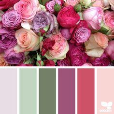 Ideas Wedding Colors Spring Lilacs Design Seeds For 2019 Colour Pallette, Colour Schemes, Color Patterns, Color Combinations, Design Seeds, Spring Wedding Colors, Color Balance, Balance Design, Color Stories