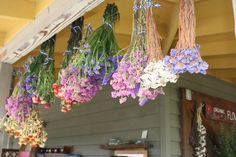 Hanging Flowers at Earthbound Farm Stand