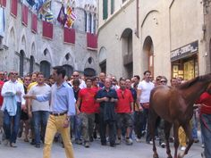 Italy - Sienna - Palio di Siena - 16 August--this is an awesome celebration to experience!