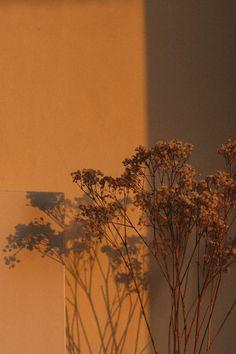 Wallpaper Pastel, Aesthetic Pastel Wallpaper, Aesthetic Backgrounds, Aesthetic Wallpapers, Wallpaper Backgrounds, Golden Colour Wallpaper, Phone Wallpapers, Minimal Wallpaper, Vintage Wallpapers