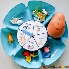 Learning About the 5 Senses Potato Head Game and Free Printable - Five Senses Preschool, 5 Senses Activities, My Five Senses, Body Preschool, Preschool Science, Sensory Activities, Kindergarten Activities, Learning Activities, Preschool Activities
