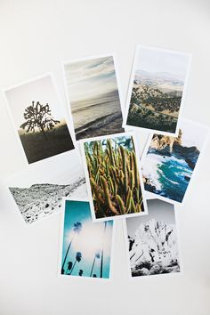 Kate Miss Prints — California Postcard Set