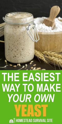 Arguably the easiest way to make your own yeast is to grow a sourdough starter. … Arguably the easiest way to make your own yeast is to grow a sourdough starter. All you have to do is capture wild yeast using flour and water. Sourdough Bread Starter, Yeast Starter, Sour Dough Starter, No Yeast Bread, Wild Yeast Bread Recipe, Recipe For Yeast, Yeast Free Breads, Yeast Bread Recipes, Bread Machine Recipes