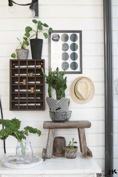 Viherkasvit terassilla Outdoor Rooms, Outdoor Gardens, Scandinavian Garden, Indoor Plants, Ladder Decor, Patio, Living Room, Interior, Flowers