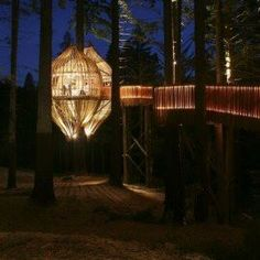 How about some dinner tonight at the Treehouse Restaurant in Auckland, New Zealand?  #Travel