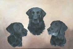 My most recent all finished! Labrador, It Is Finished, Fine Art, Dogs, Animals, Animales, Animaux, Doggies, Labrador Retriever Dog
