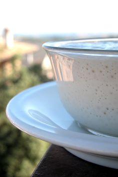 La pasta madre liquida | http://www.ilpastonudo.it/cose-di-base/la-pasta-madre-liquida/