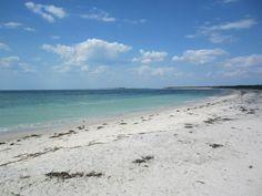 Florida: Cayo Costa island