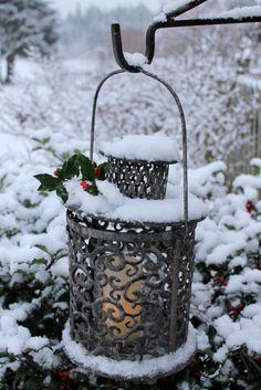 Aiken House & Gardens: Winter White