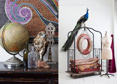 I want a taxidermy peacock... and a few living ones once we move onto some property. Dream!