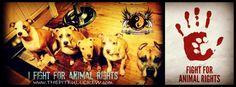 I fight for animal rights!   THEPITBULLCREW.com