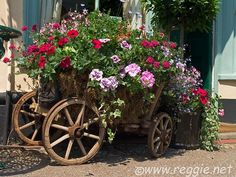 For years I have been in search of an old wheelbarrow to re-purpose into a planter.  I want it to look just like this.