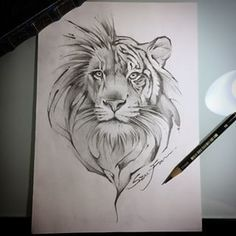 Image result for half lion half tiger tattoo