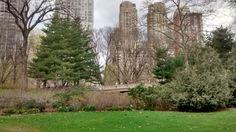 Primavera no parque em NYC