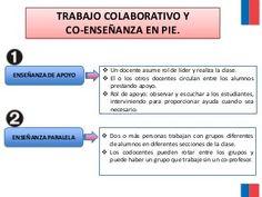 Pie biobio final (1)