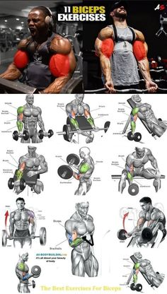 My Biceps & Triceps Workout Routine for Bigger Arms Size Best Exercise For Biceps, Big Biceps Workout, Best Chest Workout, Gym Workout Tips, Weight Training Workouts, Chest Workouts, Workout Challenge, Workout Plans, Bicep Workout Routine
