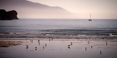 https://flic.kr/p/ttz6Ww | Cresent City, California Coastline, USA