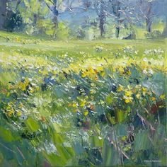Field of Daffodils by British Contemporary Artist Rex PRESTON