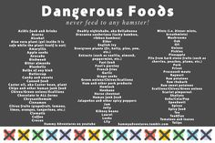 Dangerous foods for all Syrian and dwarf hamsters.
