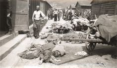 Mauthausen, Austria, April 1945, Corpses of the victims, at the time of the liberation.