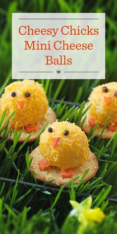 Apr 2020 - Our cheesy chicks cheese ball recipe makes a fun and easy Easter appetizer. Round crackers provide the perfect perch for these cute mini cheese balls. Mini Cheese Balls Recipe, Cheese Ball Recipes, Recipe Balls, Desserts Ostern, Kid Desserts, Easter Desserts, Easter Dinner, Easter Brunch, Hoppy Easter