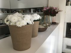 Beautiful design of The green Pot...Plant pot for indoor and outdoor use