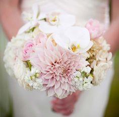 geranium lake flowers