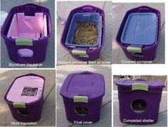 ¿Tienes gatos callejeros en tu patio trasero? Puedes mantenerlos calientes este invierno: