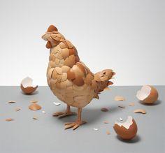 La gallina fatta di gusci